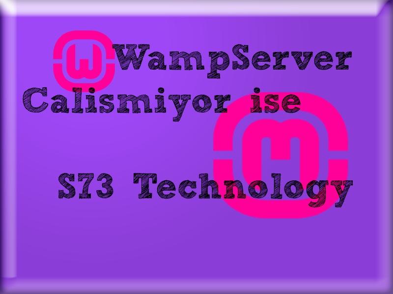 WampServer Çalışmıyor ise Buraya Mutlaka Bakın!
